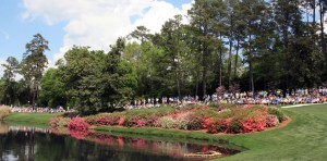 The topography and swirling breezes are conducive to both golf and plant health.
